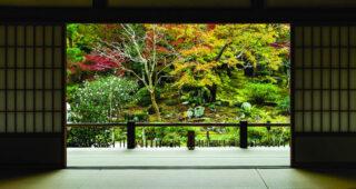 "Kolekcija Interface tepihov Embodied Beauty™ – navdihnena z japonskim konceptom ""Ikigai"""